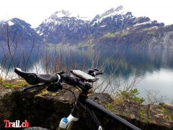 [Bild: thumb_doogee-s60-bikehalterung_05-01-2018_dsc03364.jpg]