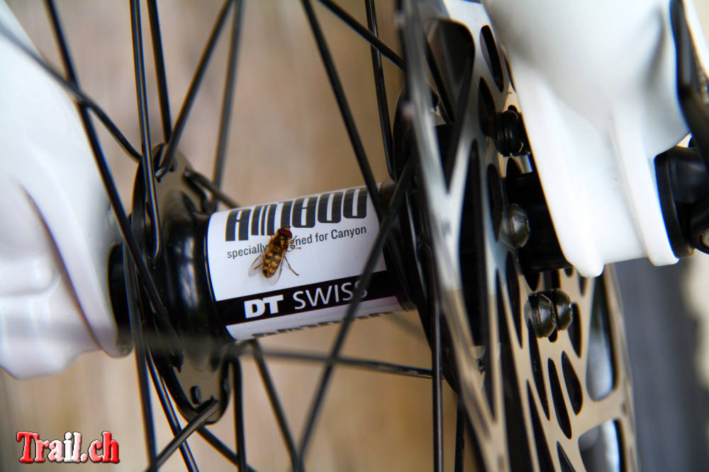[Bild: mountainbike_22-07-2011_img_3384.jpg]