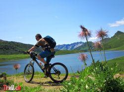 [Bild: thumb_lago-cadagno_16-07-2012_img_4070.jpg]