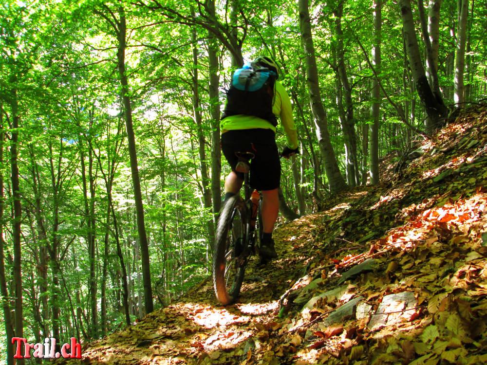 [Bild: monte-tamaro_alpe-di-neggia_24-06-2013_img_2089.jpg]