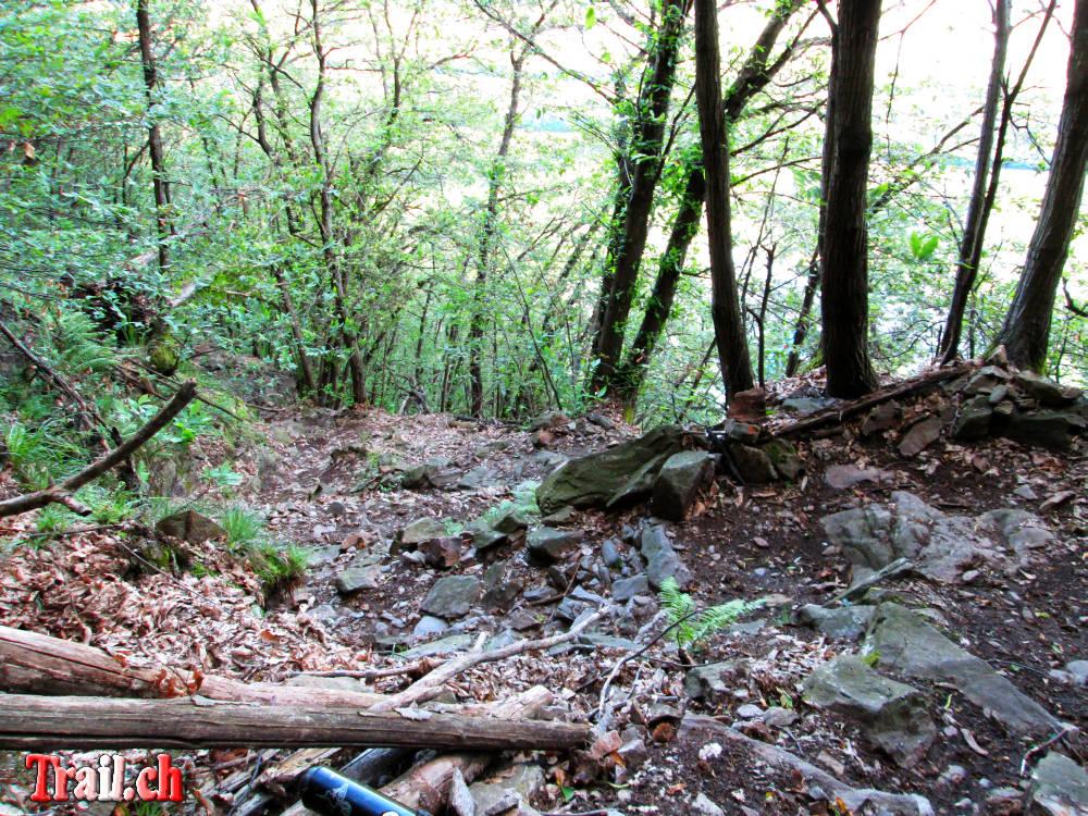 [Bild: monte-tamaro_alpe-di-neggia_24-06-2013_img_2112.jpg]