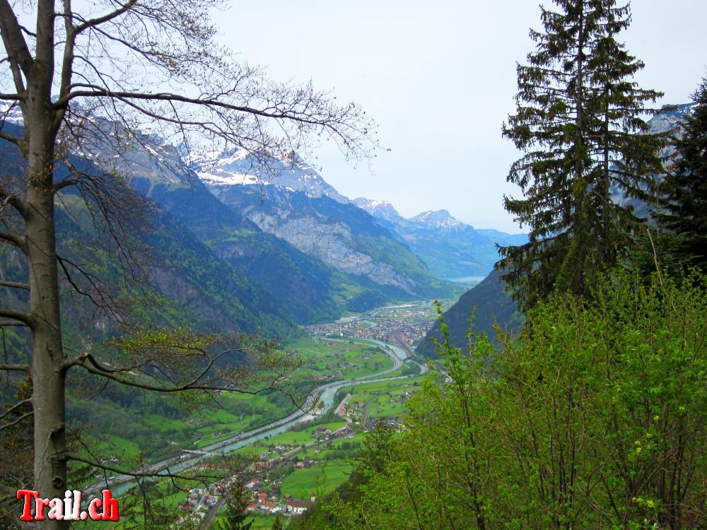 [Bild: chilcherberge_08-05-2012_img_3001.jpg]